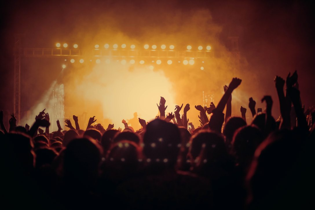 crowd of people enjoying a concert